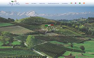 Italys wine